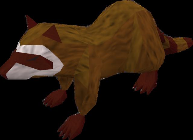 File:Raccoon (red) pet.png