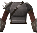 Vanguard body