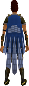 Team-26 cape equipped