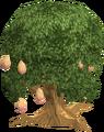 Mango tree fairy tale.png