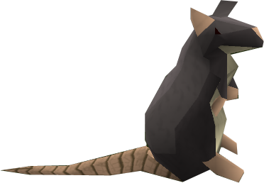File:Rat.png