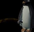 Red Raktuber penguin (fishing).png
