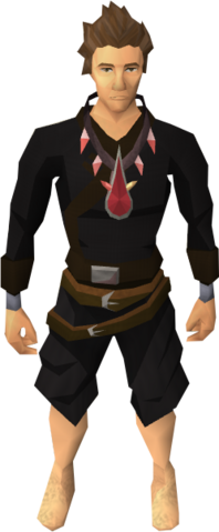 File:Brawler's blood necklace equipped.png