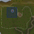 Fairy ring ALS location.png