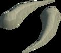 Sabre-like teeth detail.png