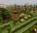 Tree Gnome Village (location)