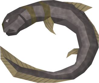 File:Burnt short-finned eel detail.png