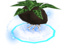 Divine herb patch III detail