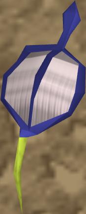 File:Blue vine blossom detail.png