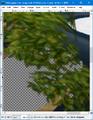 GIMP - blur tool example2.png