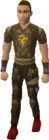 Dyed brown d'hide blessed set equipped old