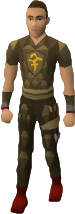 File:Dyed brown d'hide blessed set equipped old.png