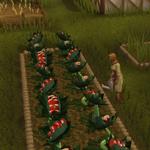 Farmed and Dangerous teaser 2