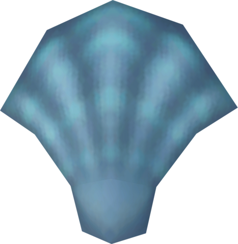 File:Sea shell detail.png