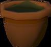 Maple seedling (w) detail
