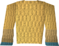 Robe of Elidinis (top) detail.png
