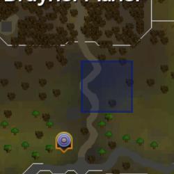 Big sprouts location