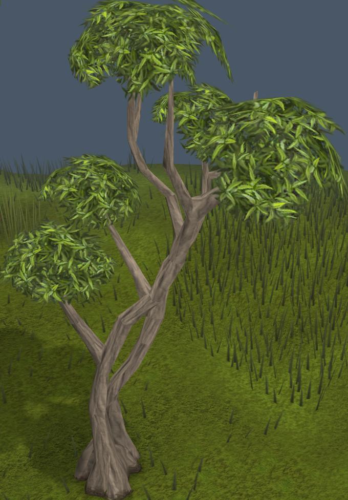 Soubor:Eucalyptus Tree.png