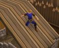 Roofslide.png
