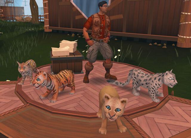 File:Big Cats news image.jpg
