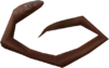 Conga Eel Whip detail
