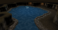 Pool inside cave in Land of Holly and Hawthorn before using Water key.png