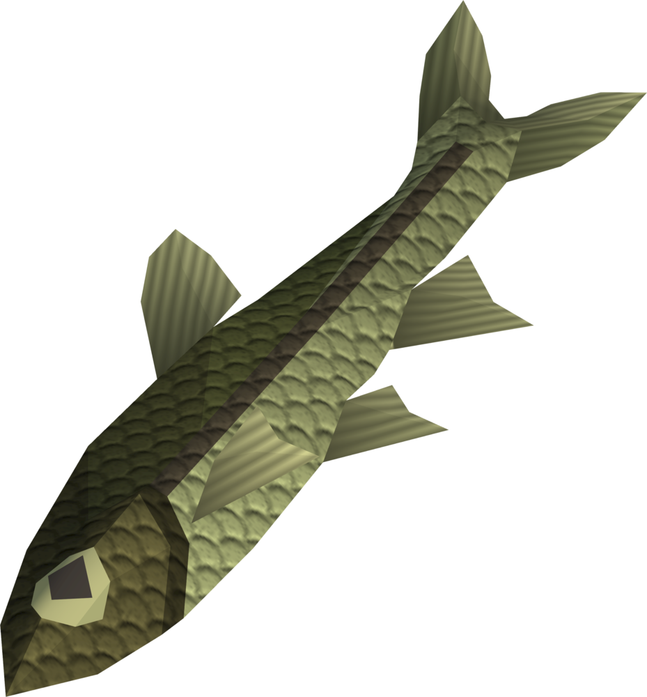 File:Raw minnow detail.png