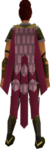 File:Team-10 cape equipped.png