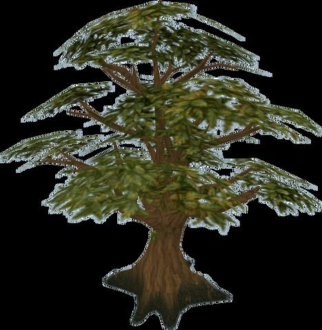 File:Oak tree.png
