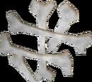 Airut bones
