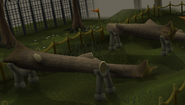Drill Demon Agility obstacle b