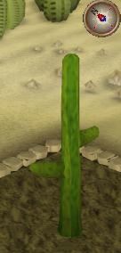 File:Cactus5.png