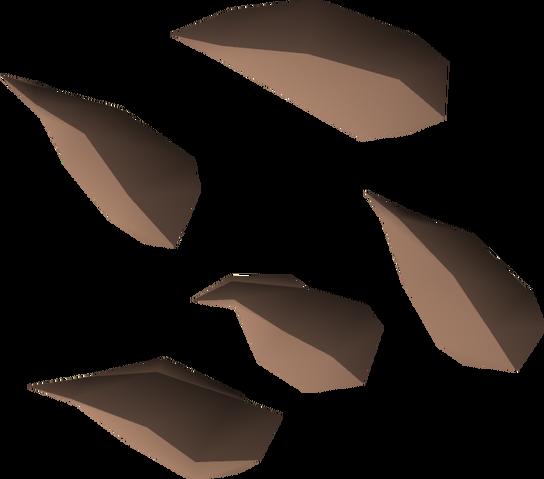 File:Potato cactus seed detail.png