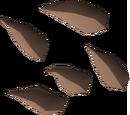 Potato cactus seed