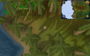 Scan clue Kharazi Jungle In north-west corner of jungle, near coastline