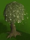 Magic tree built