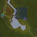 Evil Tree (Tree Gnome Stronghold) location.png