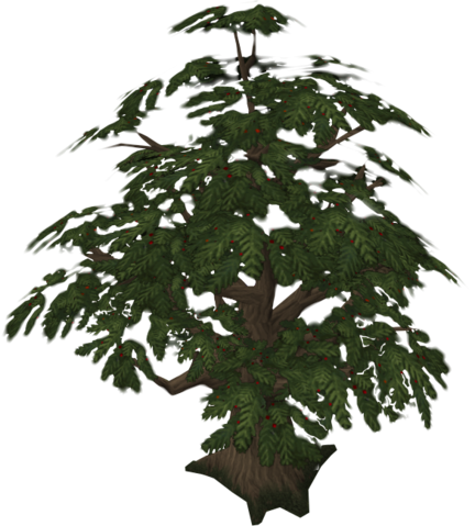 File:Yew.png
