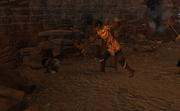Ozan vs troll