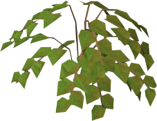 File:Plant in ground.png