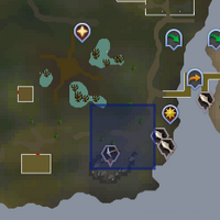 Shooting Star (Lumbridge Swamp) location
