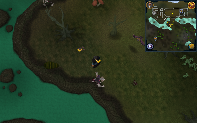 File:Scan clue Haunted Woods south-west of Alice's Farming Shop.png