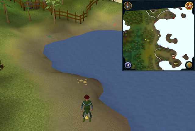 File:Compass clue Karamja north-west of gnome glider.png
