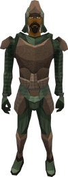 Paraleather armour (male) equipped