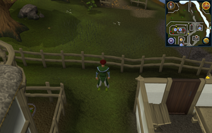 Compass clue Ardougne west of Elena's house