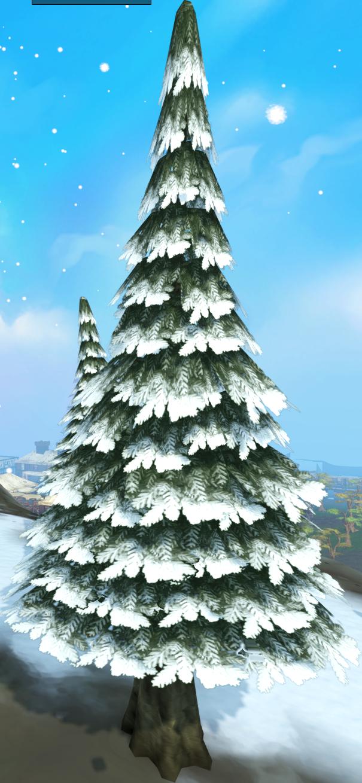 Evergreen tree (snow)