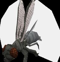 Warpd fly
