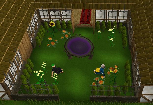 File:Fancy Hedge.jpg