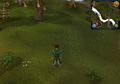 Compass clue Ardougne south-east of Fishing Guild.png