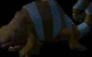 Karma the chameleon 7